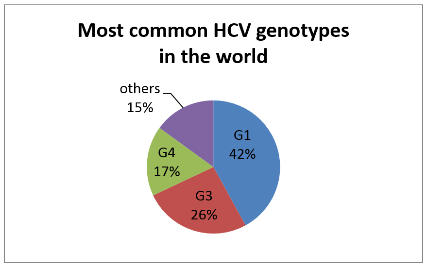 most-common-HCV-genotypes