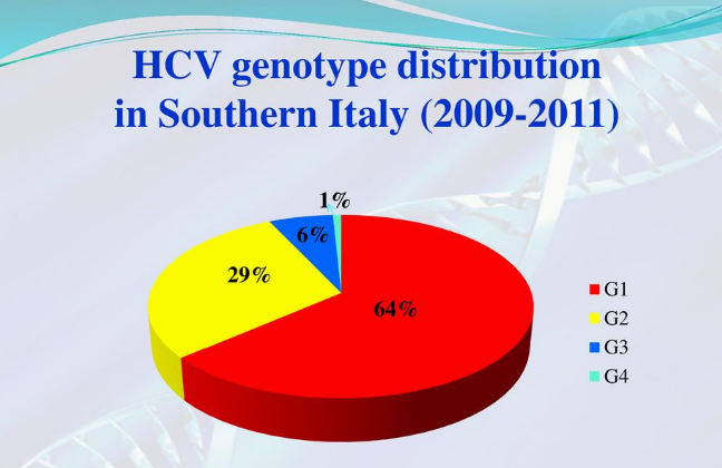 HCV Genotype in Italy